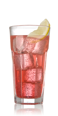Gin Cranberry